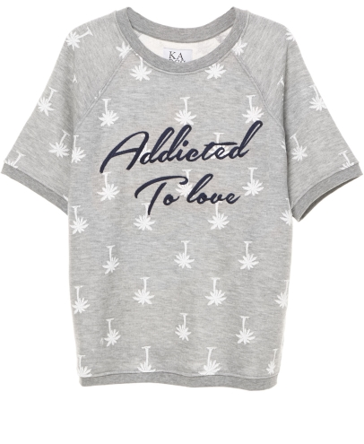 Addicted to Love Raglan SS sweater